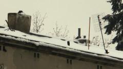 Śnieg powinien być pod sankami nie na dachach