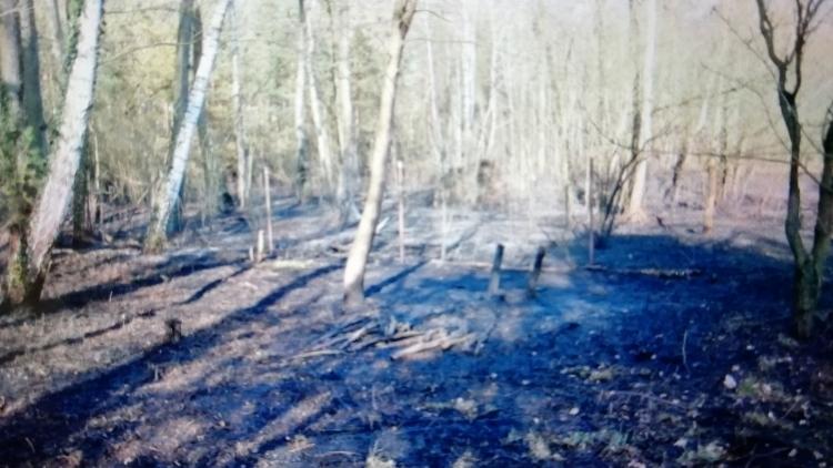 Przez jego lekkomyślność spłonęło 1,5 hektara poszycia lasu